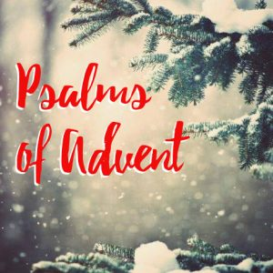 4th Sunday of Advent – Christmas Eve