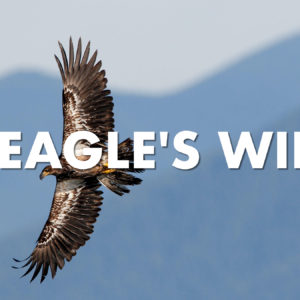 On Eagle's Wings – Part 3