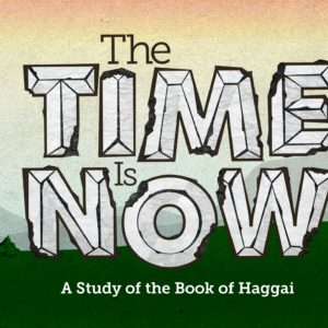 The Time Is Now: The Hard Right